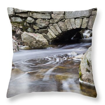 Water Under The Bridge Throw Pillow by Andrew Pacheco