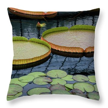 Waterlilies And Platters 2 Throw Pillow by Byron Varvarigos