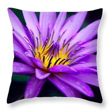 Waterlily #23 Throw Pillow by Chris Lord
