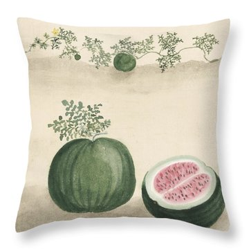 Watermelon Throw Pillow by Aged Pixel