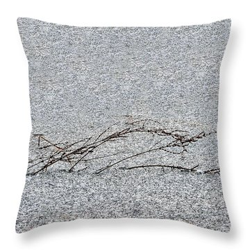 Weed In Frozen Pond Throw Pillow by Dan Friend