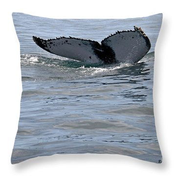 Whale Tail Throw Pillow by Bob Hislop