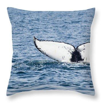 Whale Tail Stellwagen Bank Throw Pillow by Michelle Wiarda