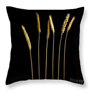 Wheat Throw Pillow by Bernard Jaubert