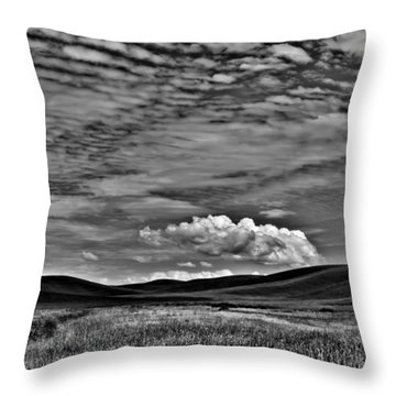 Wheat Fields In The Palouse Throw Pillow by David Patterson