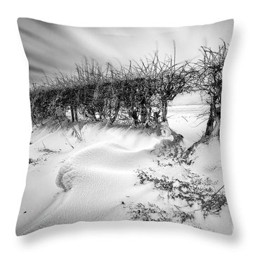 When The Wind Blows Throw Pillow by John Farnan