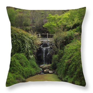 When Too Many Tears Have Fallen Throw Pillow by Laurie Search