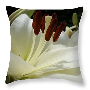 White Asiatic Lily Throw Pillow by Jacqueline Athmann