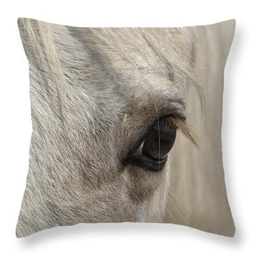 White Beauty D1412 Throw Pillow by Wes and Dotty Weber