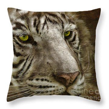 White Bengal Throw Pillow by Lois Bryan