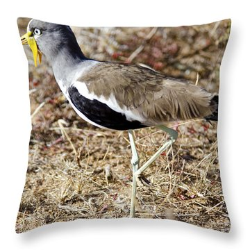 White-crowned Lapwing Throw Pillow by Pravine Chester