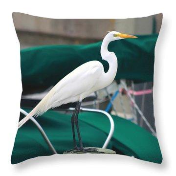 White Egret Throw Pillow by Debra Forand
