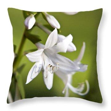 White Hosta Flower Throw Pillow by Christina Rollo