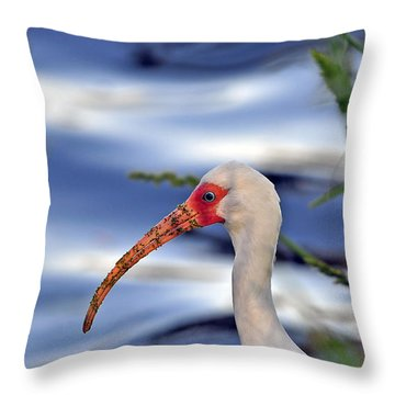 Intriguing Ibis Throw Pillow by Al Powell Photography USA