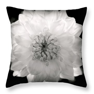 White Magic Throw Pillow by Karen Wiles