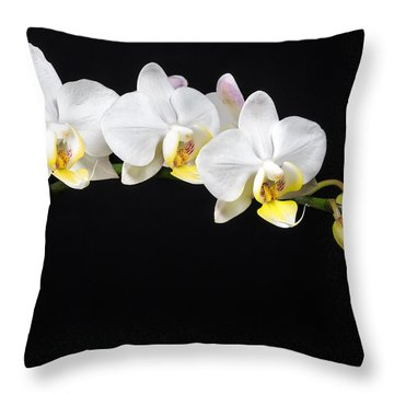 White Orchids Throw Pillow by Adam Romanowicz