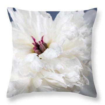 White Peony Flower  Throw Pillow by Elena Elisseeva