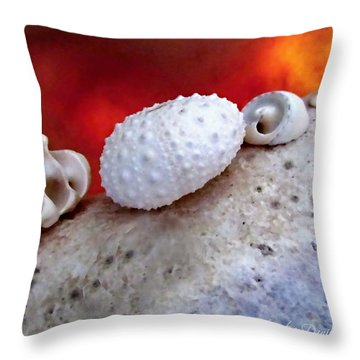 White Seashells And Purple Conch  Throw Pillow by Danielle  Parent