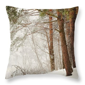 White Silence Throw Pillow by Jenny Rainbow