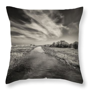White Swan Throw Pillow by Dave Bowman