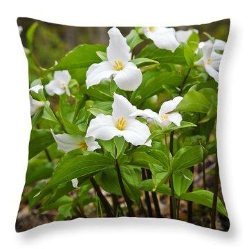 White Trillium Throw Pillow by Elena Elisseeva