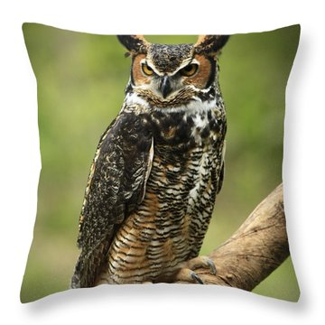 Whoos Watching Me Great Horned Owl In The Forest  Throw Pillow by Inspired Nature Photography Fine Art Photography