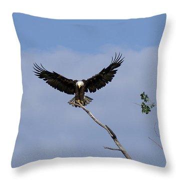 Wide Open Throw Pillow by Lori Tordsen