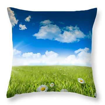Wild Daisies In The Grass With A Blue Sky Throw Pillow by Sandra Cunningham