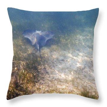 Wild Sting Ray Throw Pillow by Eti Reid