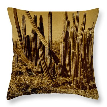 Wild West Ivb Throw Pillow by Anita Lewis