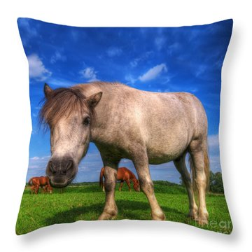 Wild Young Horse On The Field Throw Pillow by Michal Bednarek
