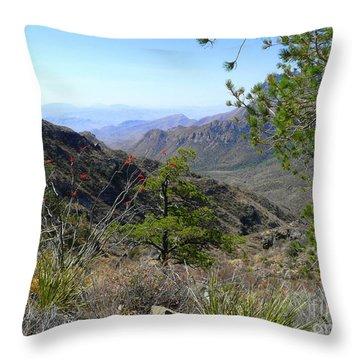 Wilderness Walk Throw Pillow by Avis  Noelle