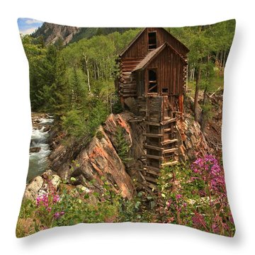 Wildflowers Along The Crystal Throw Pillow by Adam Jewell