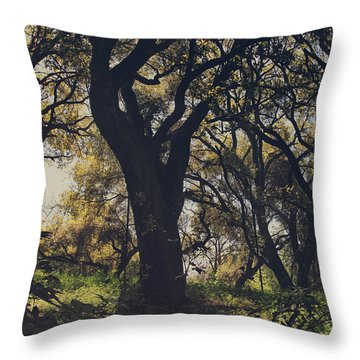 Wildly And Desperately My Arms Reached Out To You Throw Pillow by Laurie Search