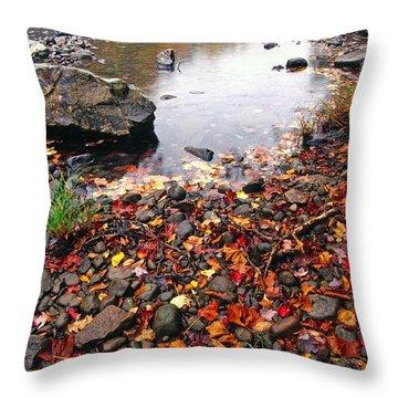 Williams River Monongahela National Forest Throw Pillow by Thomas R Fletcher