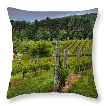 Willows Winery Throw Pillow by Trey Foerster