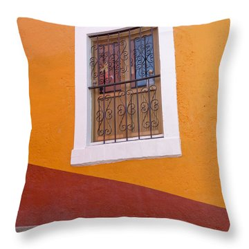 Window 1 Throw Pillow by Douglas J Fisher