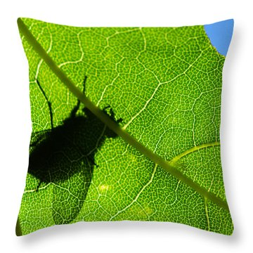 Window Of Opportunities - Featured 3 Throw Pillow by Alexander Senin