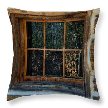 Window Reflection Throw Pillow by Paul Freidlund