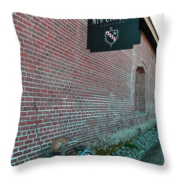 Wine Break Throw Pillow by Holly Blunkall