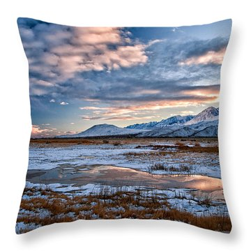Winter Afternoon Throw Pillow by Cat Connor
