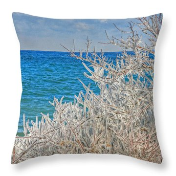 Winter Beach Throw Pillow by Michael Allen