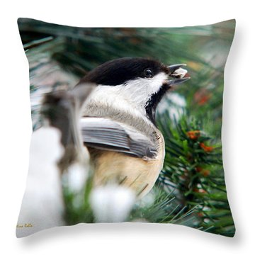 Winter Chickadee With Seed Throw Pillow by Christina Rollo