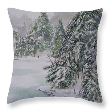 Winter Chill St Lawrence River Throw Pillow by Robert P Hedden