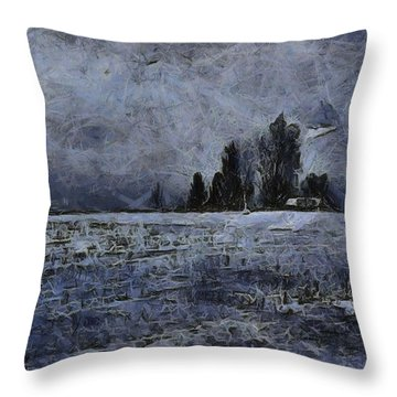 Winter Day Throw Pillow by Dan Sproul