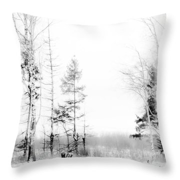 Winter Drawing Throw Pillow by Jenny Rainbow