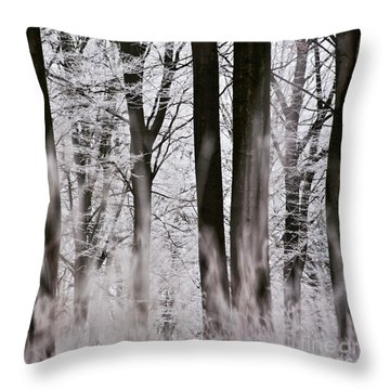 Winter Forest 1 Throw Pillow by Heiko Koehrer-Wagner