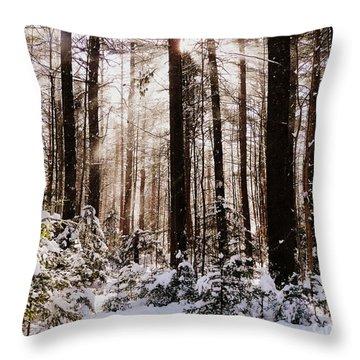 Winter Forest Throw Pillow by Avis  Noelle