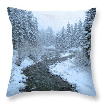 Winter Forest Throw Pillow by David Rucker