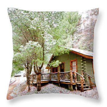 Winter Green Throw Pillow by Debra and Dave Vanderlaan
